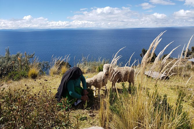 3-Day Cusco to Puno & Titicaca Lake Small Group Tour