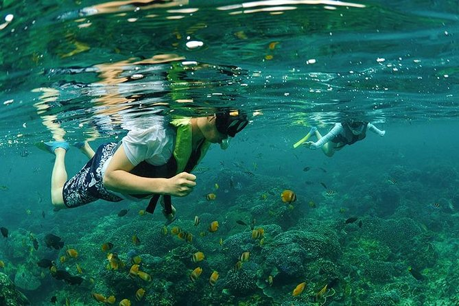 4 Point Snorkeling Nusa Penida from Bali with Japanese-Speaking Guide