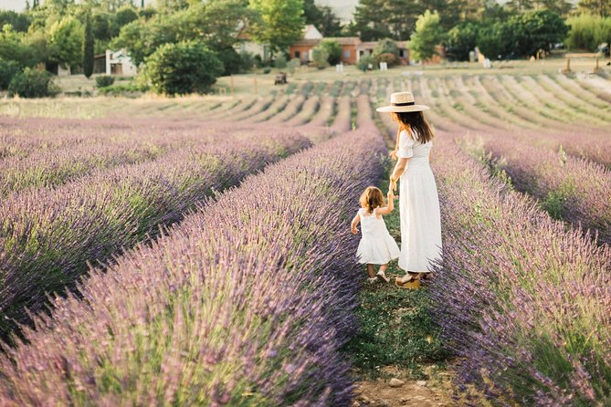Visit a lavender field and participate in thematic workshops