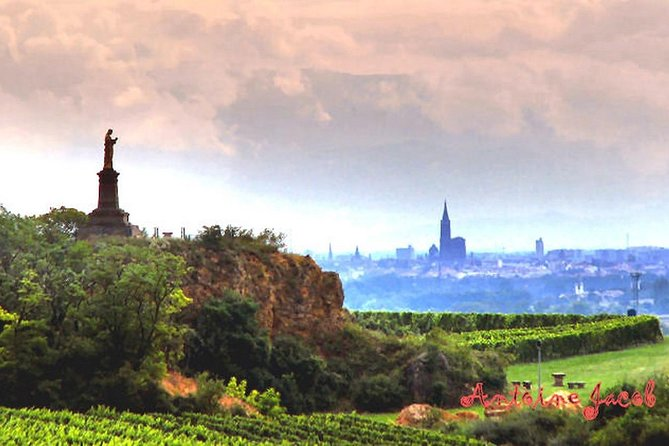 Alsace Vineyards Guided Day Tour with Lunch from Strasbourg