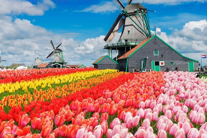 From Brussels :Keukenhof Tulips and Delft Tour