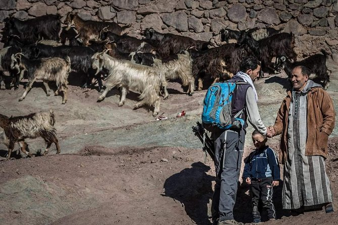 Visit Imlil village in the High Atlas mountains in Private Full-Day Tour