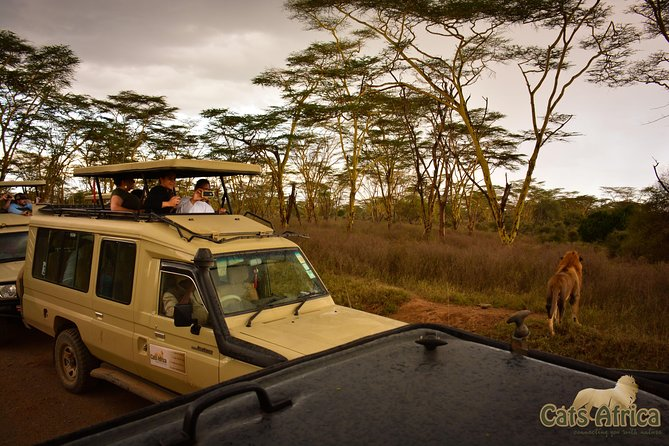4-Day Adventure Express Safari - 4x4 Gold