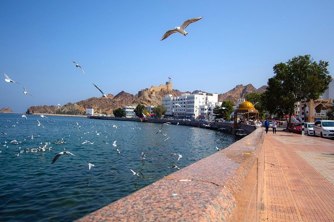 Full day Muscat City Tour
