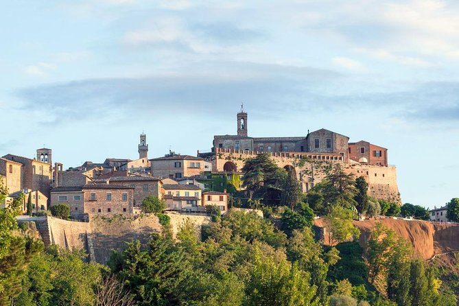 Day trip from Rome: Deluxe wine tasting in Montalcino - private tour