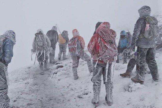 Rongai Route Kilimanjaro Climbing in 7 Days