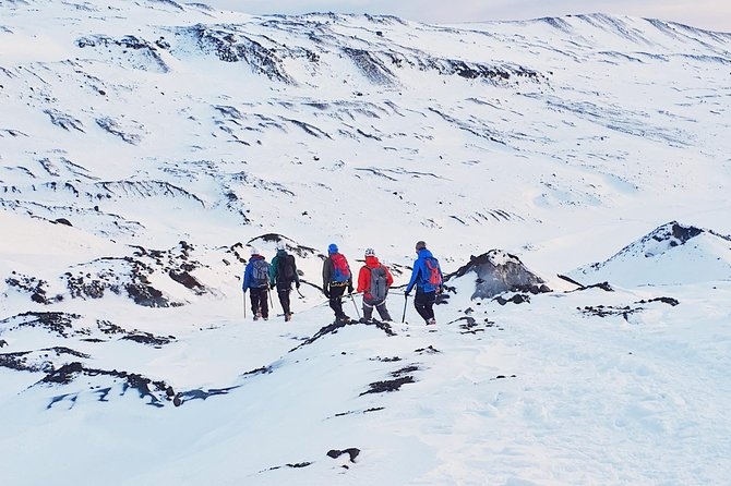3.5-Hours Glacier Walking Experience in Breiðamerkurjökull