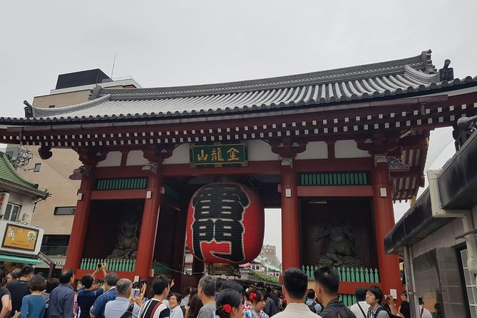 Tokyo: 3 hours small group walking tour