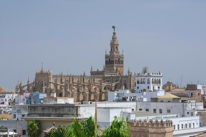 Travel from Cadiz to Seville and visit its Monuments.