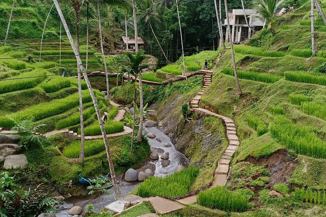 Ubud and Kintamani tour