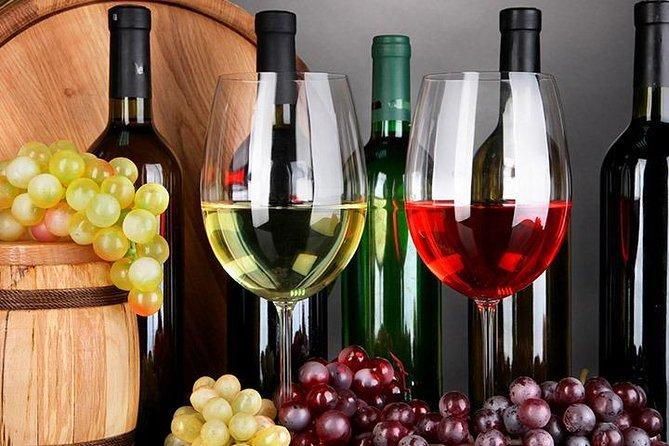 Private Tour to Coimbra and the Bairrada Wine Region