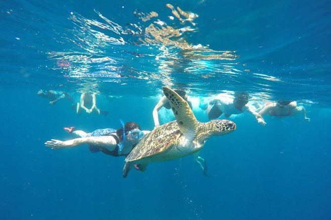Snorkeling Tour In Gili Trawangan, Gili Meno And Gili Air Pick Up From Bali