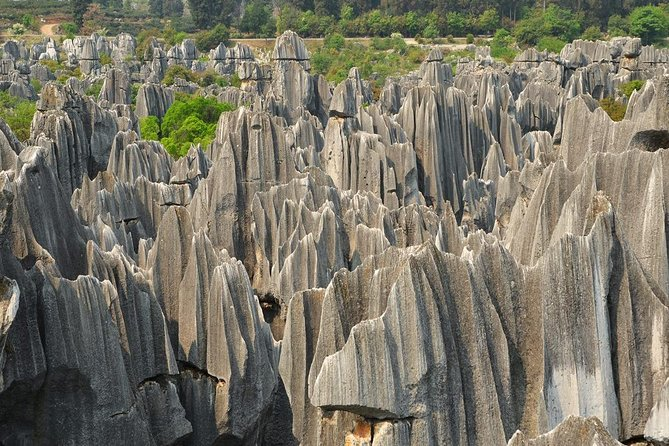 Kunming Day Trip to Stone Forest