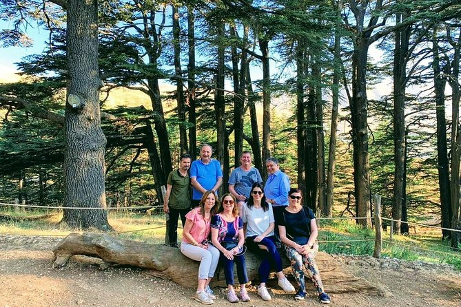 Small-Group Tour Qadisha Valley, Becharre and Cedars of God from Beirut