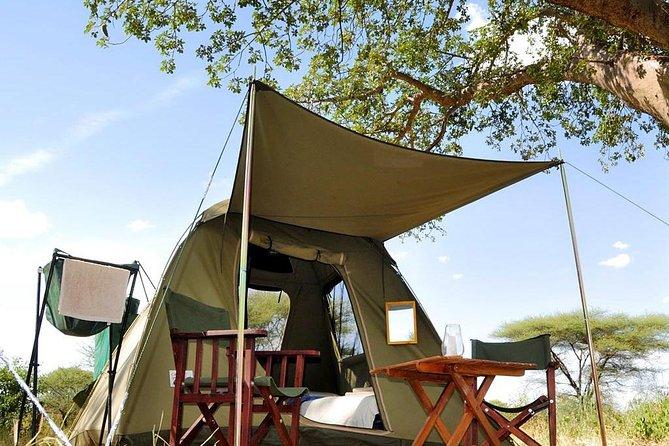 Kenya to Tanzania and Relaxation in Zanzibar-13 Day