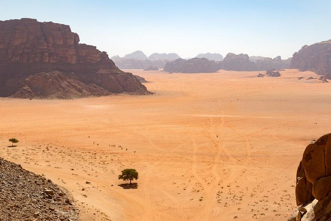 Full Day Desert Tour | Wadi Rum Experience