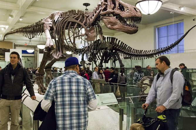 NYC American Museum of Natural History Private Family tour