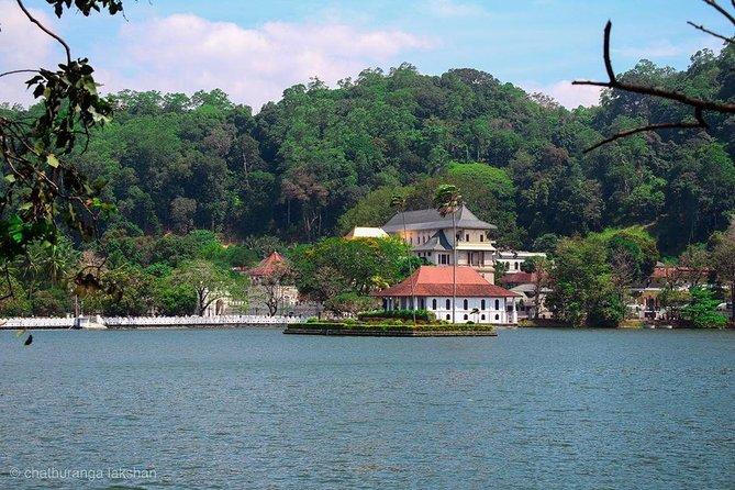 Kandy Day Tour from Colombo