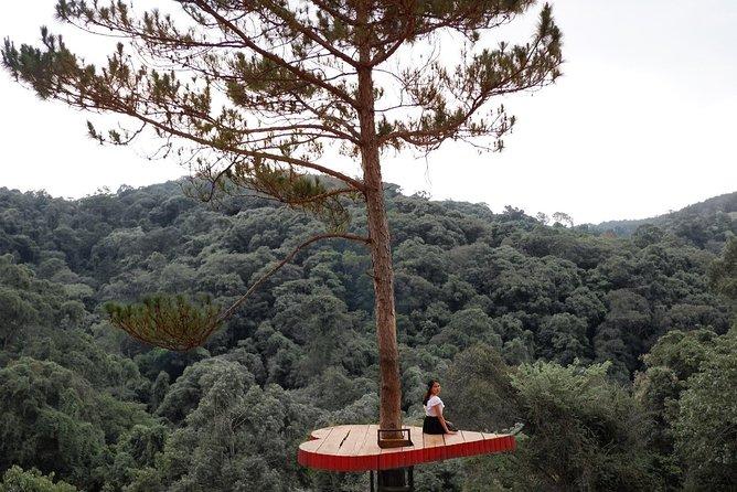 COMBO: Da Lat New Tourist Attractions Day Tour - LUMIERE Light Garden