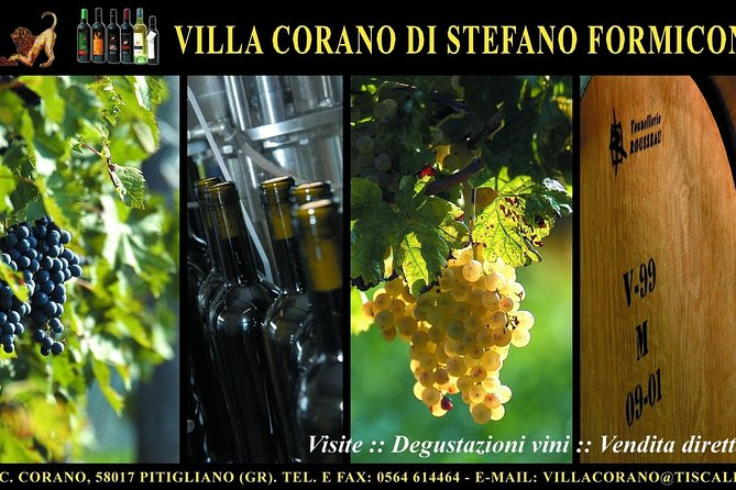 Villa Corano Winery Tour in Tuscany photo 3