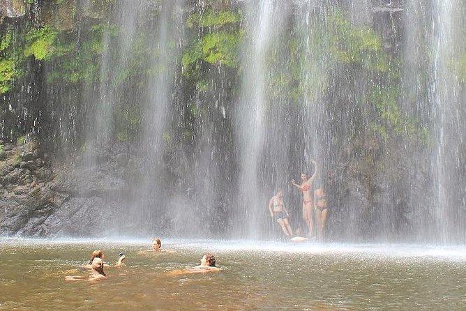 Materuni Waterfalls & Chaga Lifestyle Tour Moshi- Day Trip