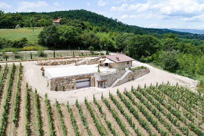 Visit and tasting in the il Patriota's winery, the Classic Method in Casentino
