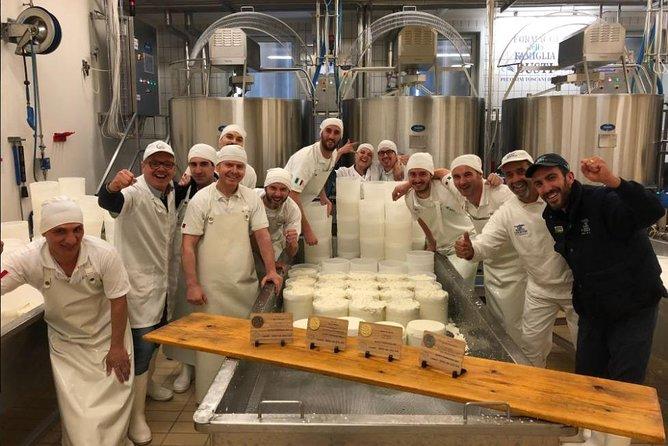 Shore Excursion from Livorno: Pisa, Pecorino Cheese Factory & Chianti Wine Tour