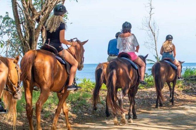 Zip-line , Tubing and Horseback Riding/Swim