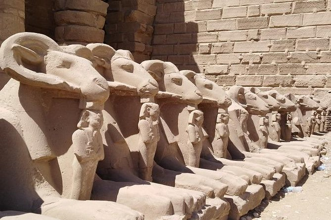 Luxor Sightseeing with Bus Multilingual