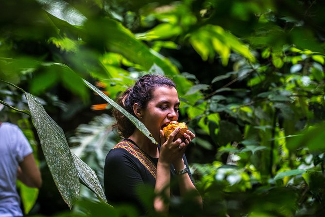 Full Day Cafe And Cacao In Los Montes De Montes de Maria, Tourism And Peace