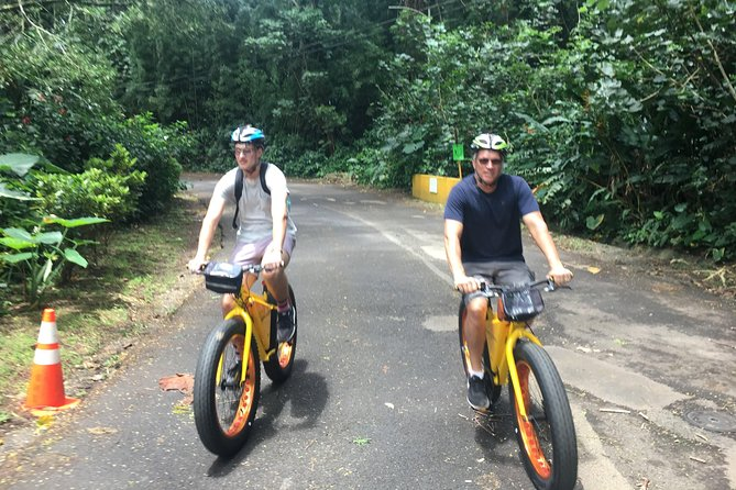 Manoa Valley-Tropical Gardens Bike to Hike Tour, lunch included