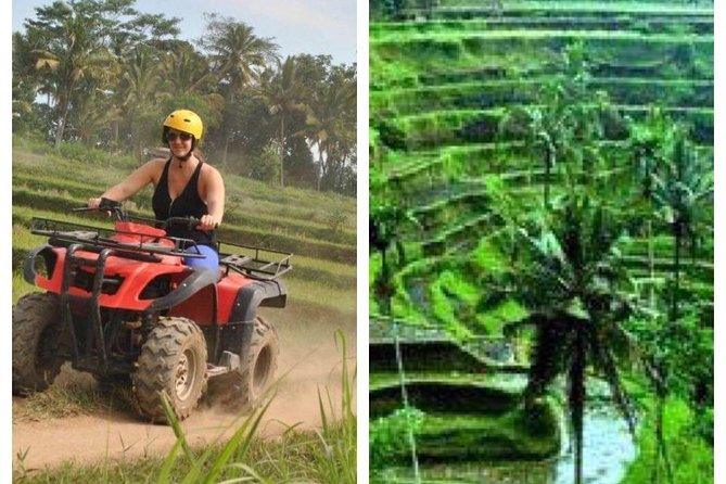 Quad Bike + Ubud Tour