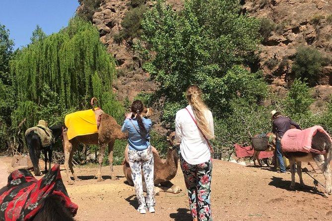 Atlas Mountains adventure a trip from Marrakech