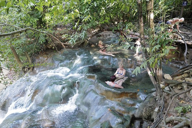 Early Bird Jungle Tour to Emerald Pool, Krabi Hot Springs & Tiger Cave Temple
