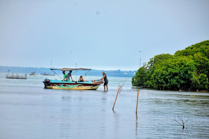 Private safari in Negombo Lagoon