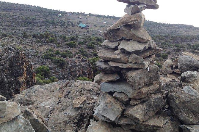 Kilimanjaro Trek – Lemosho Route - 8 Days