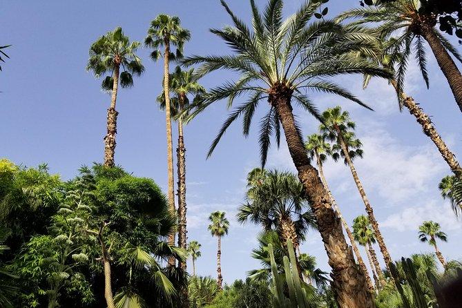 private city tour through Marrakech