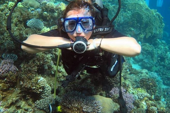 2 Dives in Tiran Island by boat