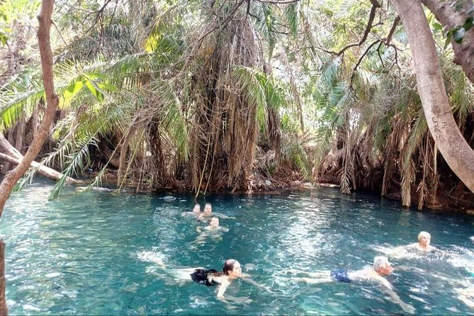 Day trip to Kikuletwa Hotsprings