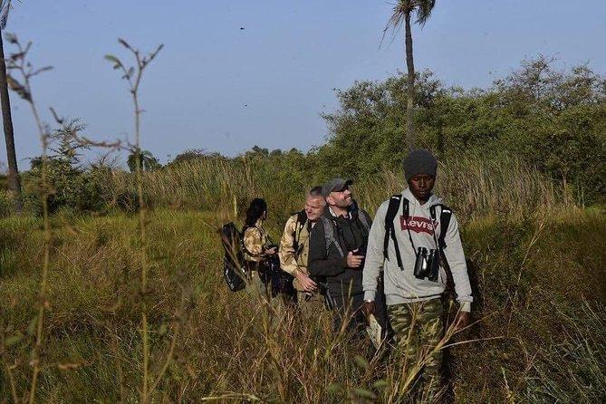walk through Kotu rice fields