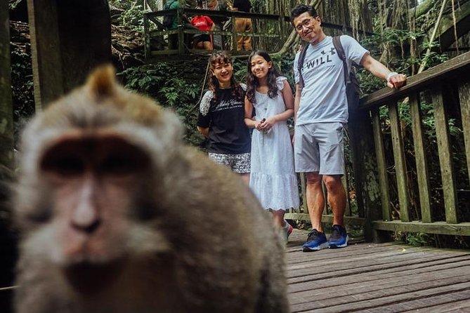 Bali - Ubud Tour