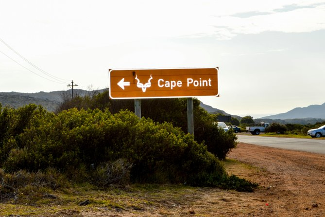 Private Cape of Good Hope Sightseeing and African Penguin Tour