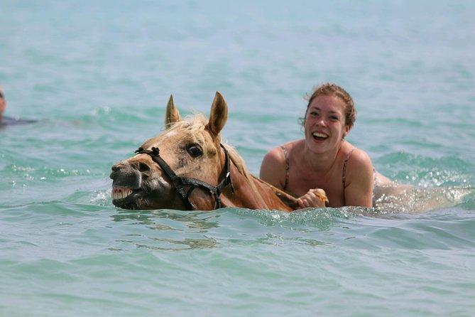 Horseback Riding & Swim