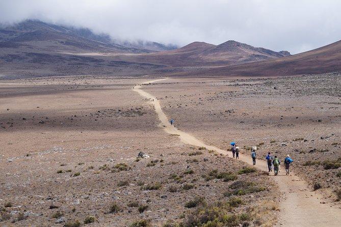 Marangu Day Hike (2-day)
