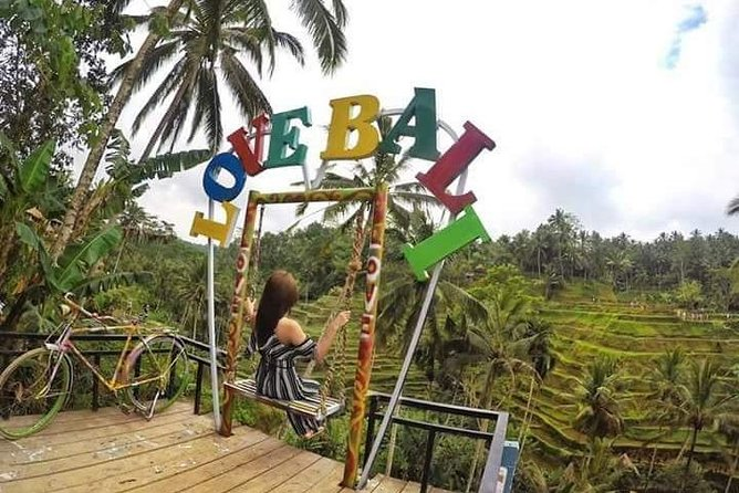 From Nusa Dua : Private Guided Tour to Ubud - Free WiFi
