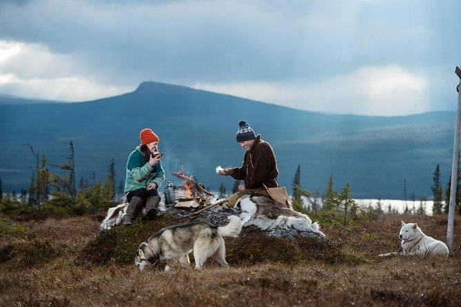 2 Day - Call Of The Wild Bushcraft Experience: