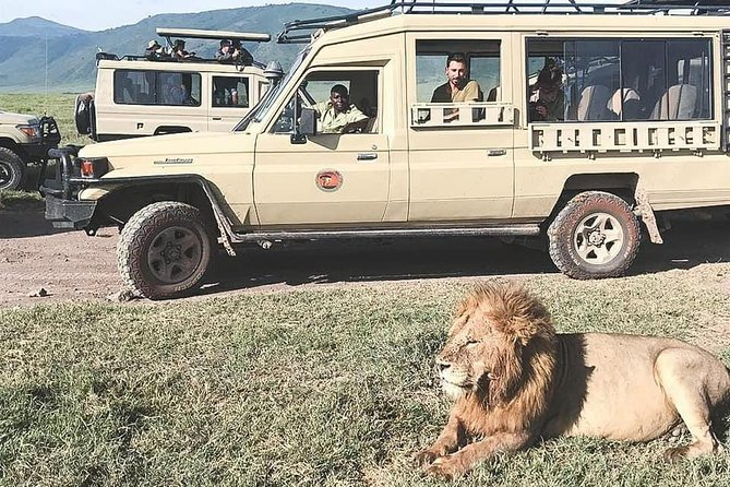 Jambo Jambo 3 Days Safari