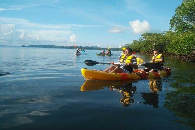 Day Mangroves Kayaking at Havelock Island (Swaraj Dweep), India