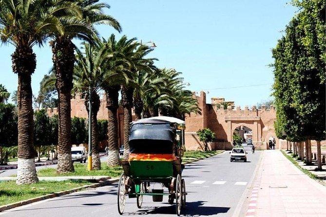 Agadir-Taroudante transfer