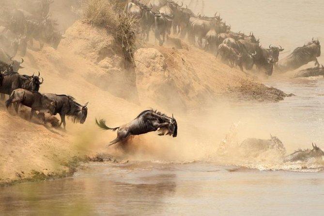 Weekend Getaway – Masai Mara